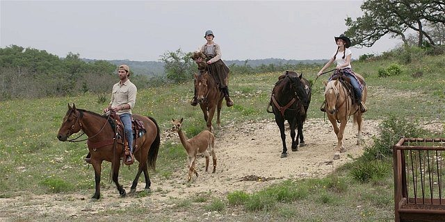 Walker Cordell Augie and Stella bringing back llama 1.14.