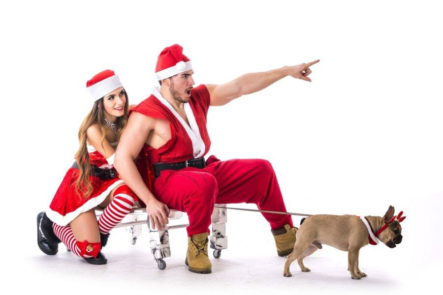 hottest holiday gift guide family friends sexy santa pointing with pug sleigh